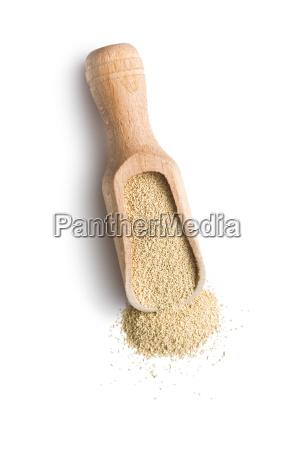 dry yeast in scoop