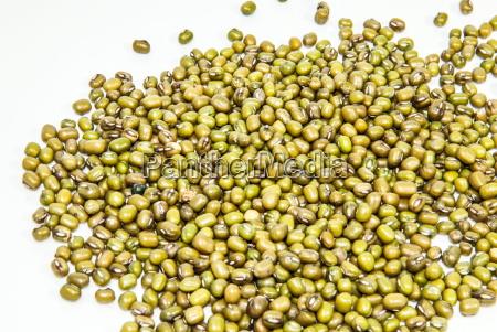 mung bean on white background