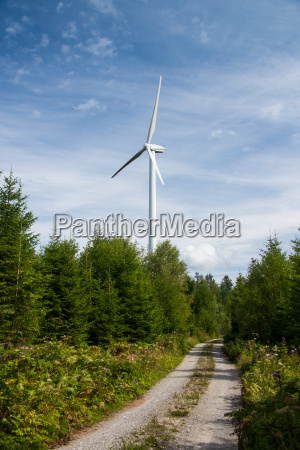 wind turbine in the forest