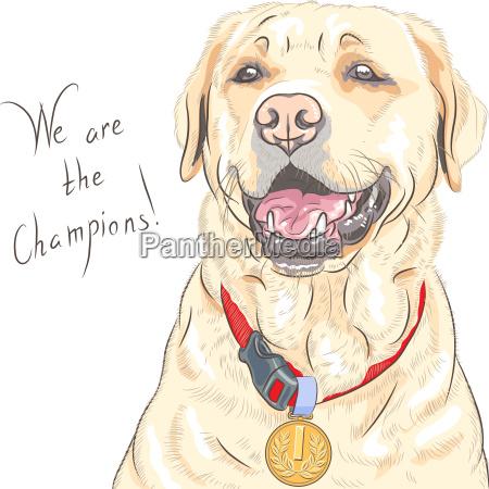 vector dog breed labrador retriever champion