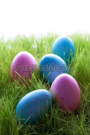 many, pink, and, blue, easter, eggs - 13487654