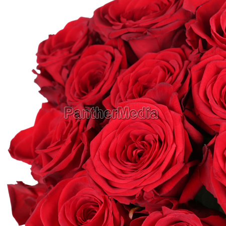 bouquet of roses for birthday valentines