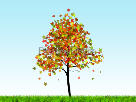 abstract colored sunny autumn tree