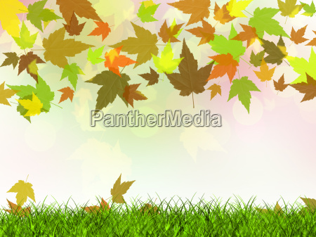 autumn rusty leaves falling on the