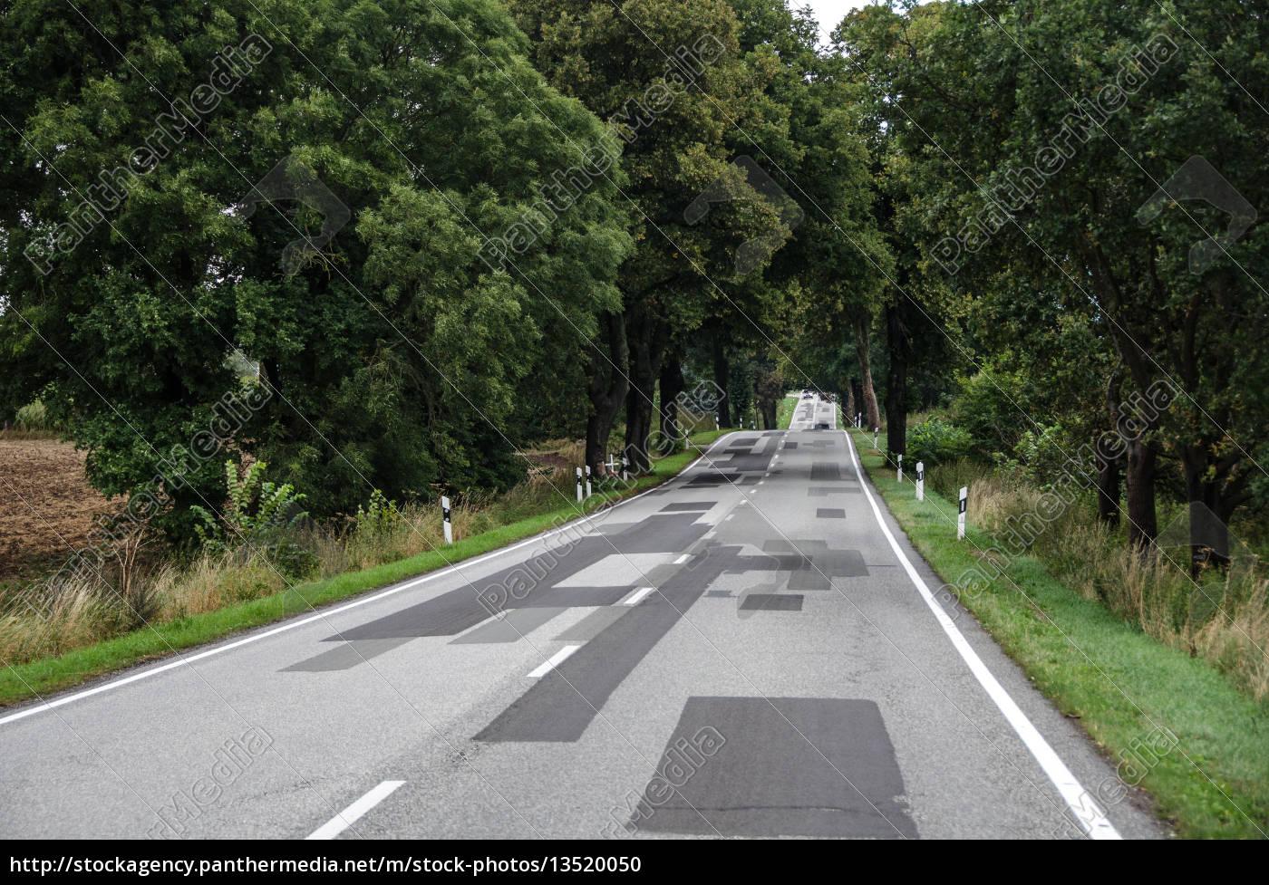 country, road, in, brandenburg - 13520050