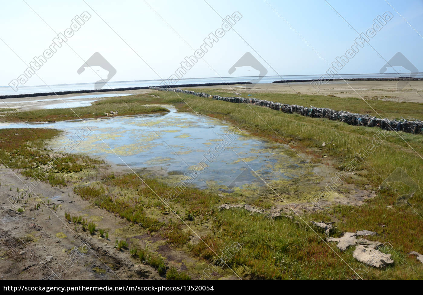 land, reclamation, in, the, north, sea - 13520054