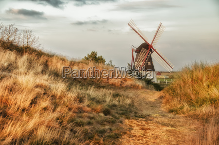 windmill, behind, sand, dune, with, golden - 13520052