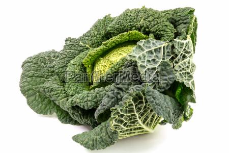 savoy, cabbage - 13522824