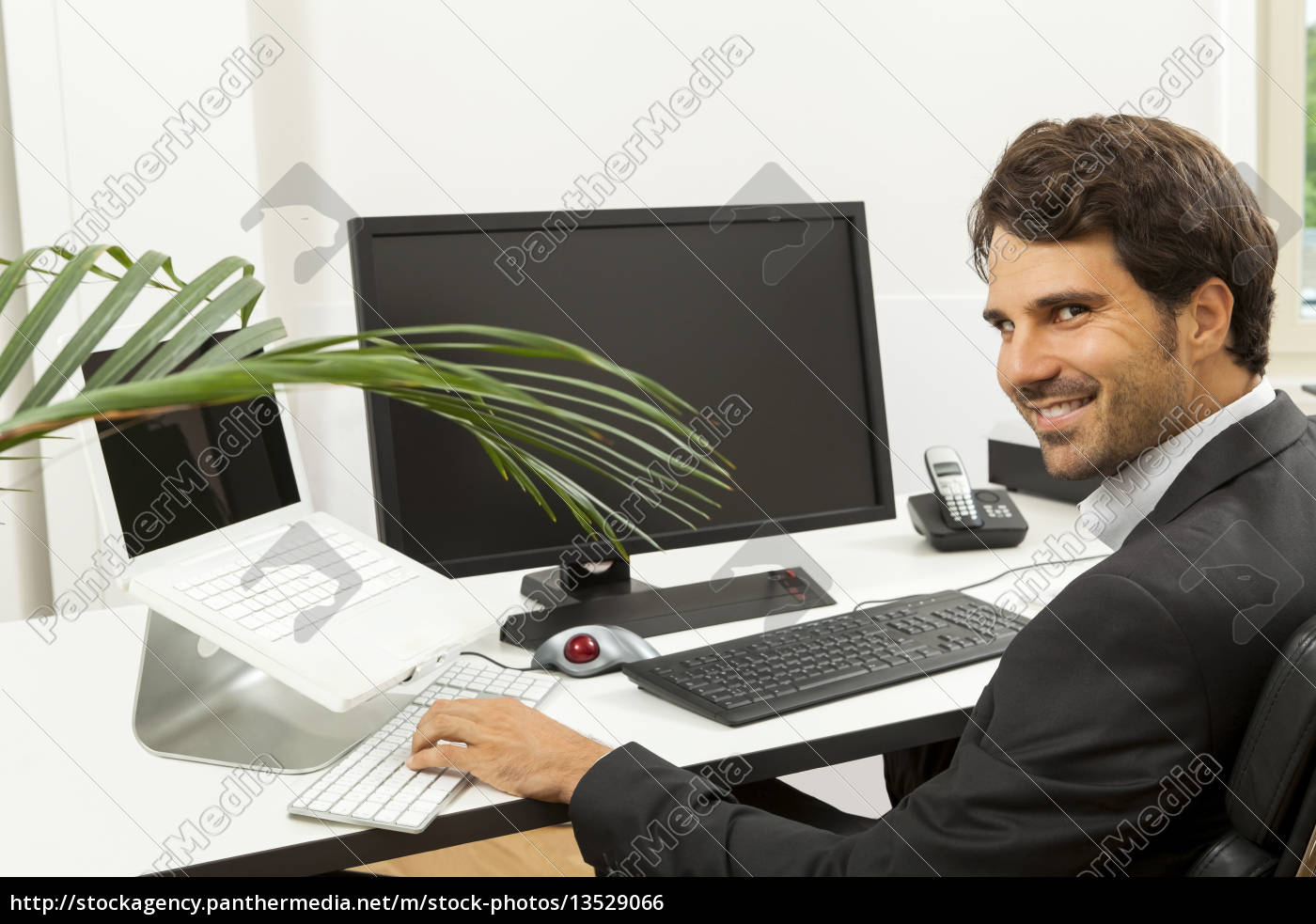 Young Successful Businessman With Black Suit In The Stock Image 13529066 Panthermedia Stock Agency