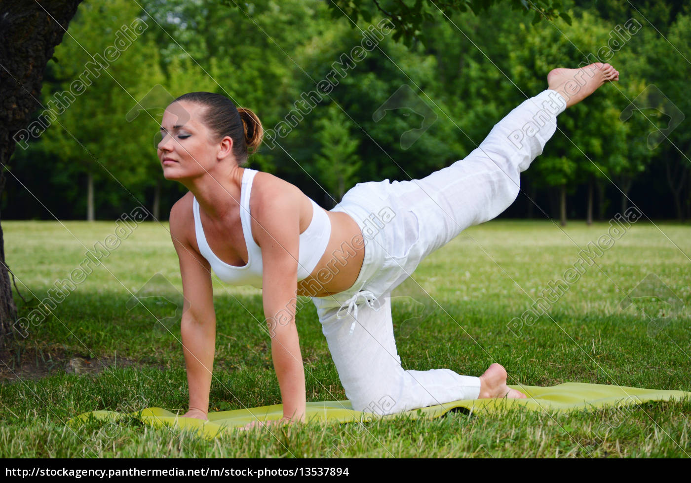 young, woman, during, yoga, meditation, in - 13537894