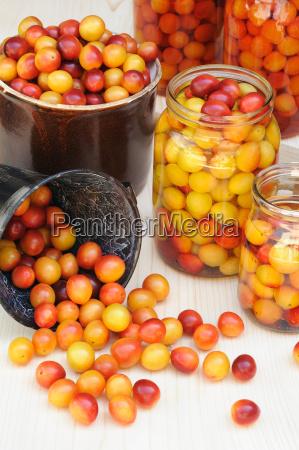 preserving mirabelle plums jars of