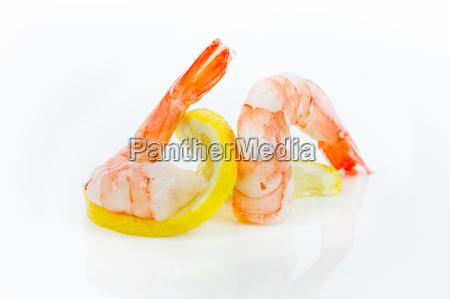shrimp - 13551360