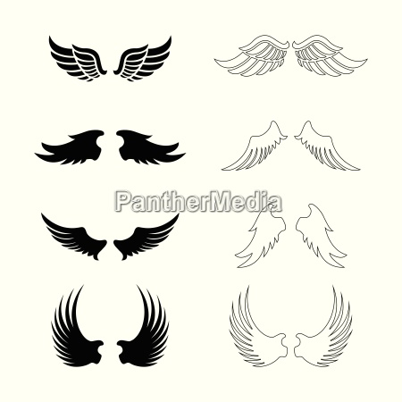 set of vector wings decorative
