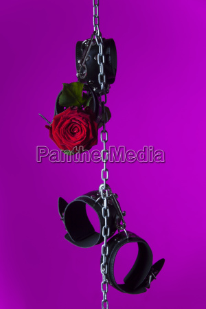 handcuffs and a rose on a
