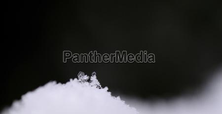 single small snow crystal panorama