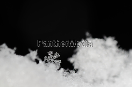 beautiful snow crystal in new zealand