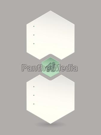 hexagon infographic with eco house icon