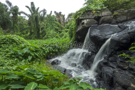 mauritius balaclava waterfall on the