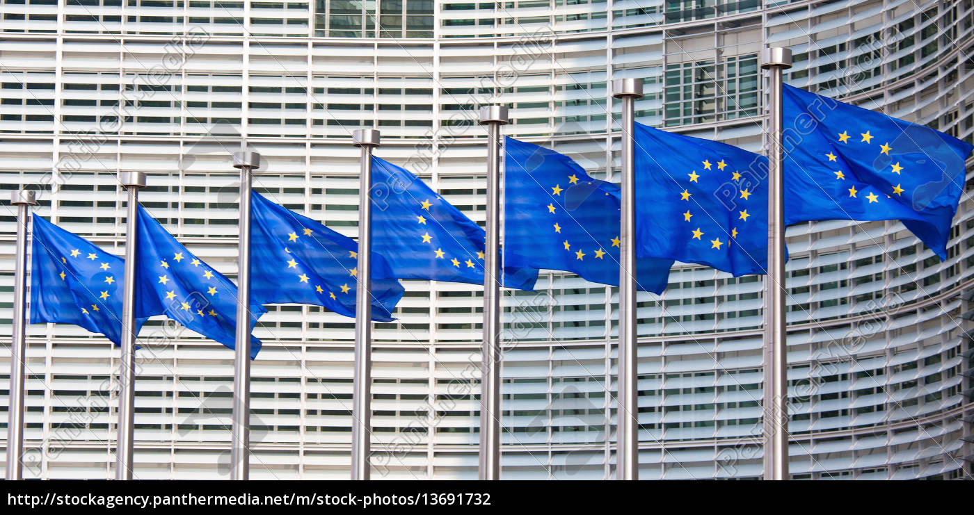 european, flags, in, front, of, the - 13691732