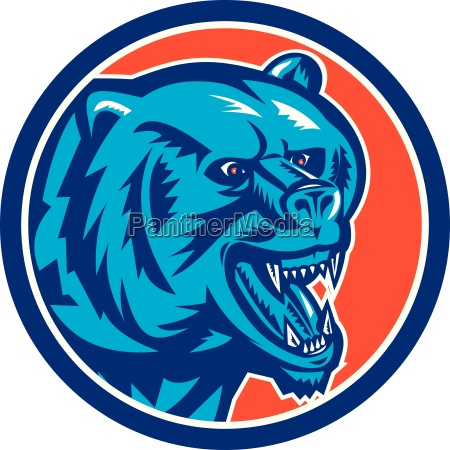 grizzly bear angry head circle retro