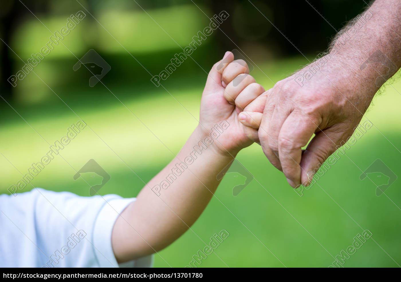 grandfather, and, child, using, laptop - 13701780