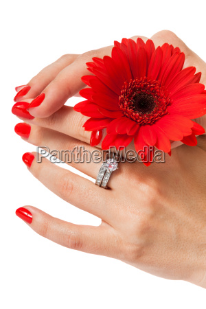 hands of woman with beautiful neat