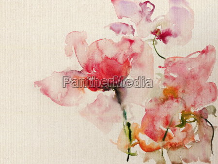 roses watercolor canvas
