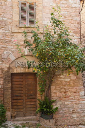 old stone house with plants