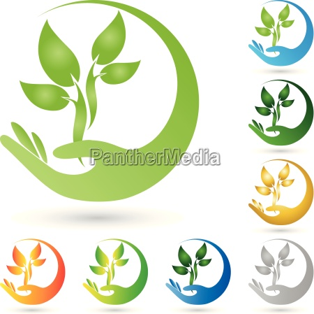 logo plant leaves hand naturopaths