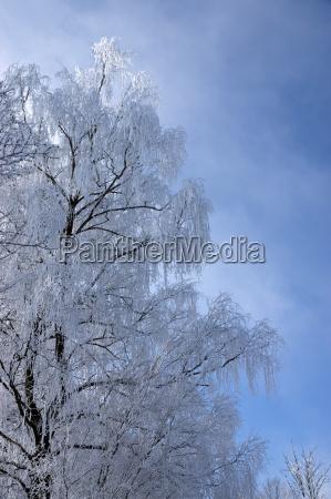 ice age in muehlberg bavaria germany