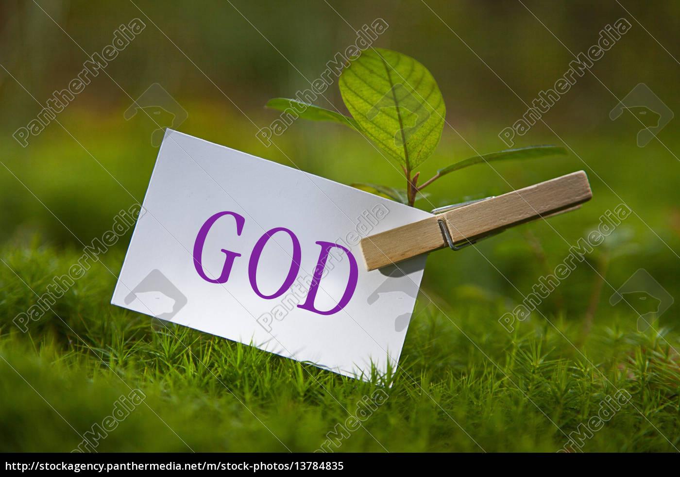 god - 13784835