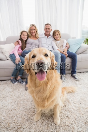 family, sitting, on, the, couch, with - 13793865