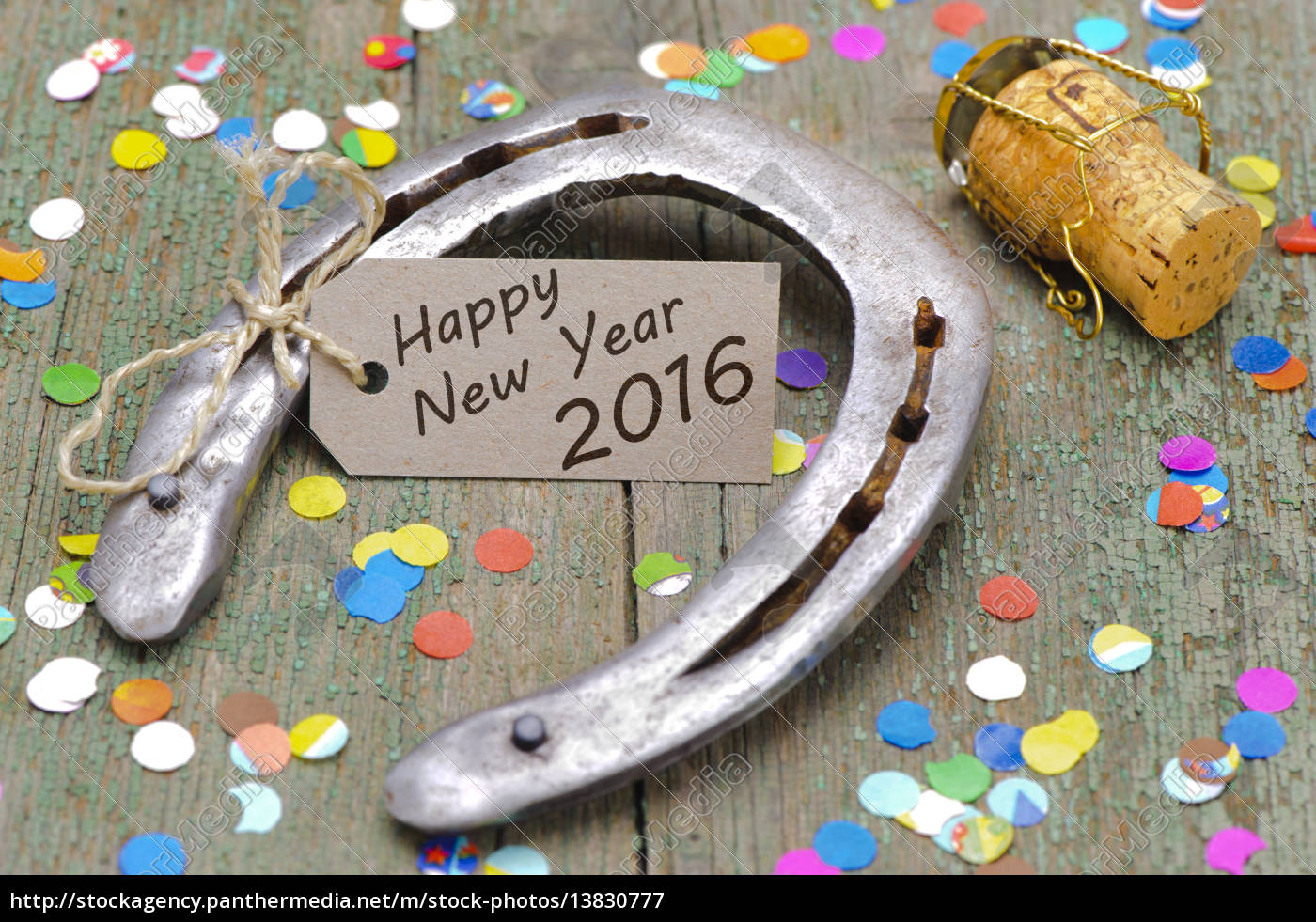 new, year, 2016, with, horseshoes, for - 13830777