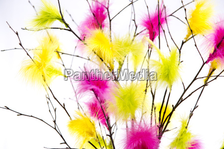 easter twigs with coloured feathers