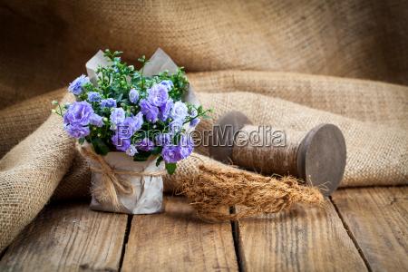 blue bells flowers in paper packaging