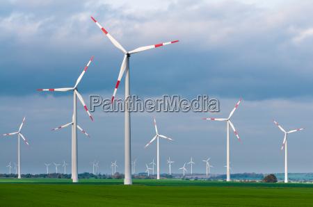 wind farm on a windy day