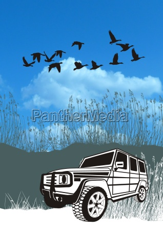 offroad car in the reeds