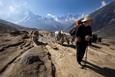 a trekker in nepal looks over