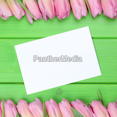 frame, from, tulips, flowers, with, greeting - 14038691