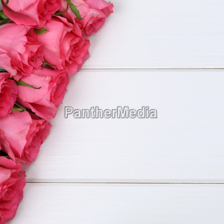 roses, floral, birthday, or, mother's, day - 14038697
