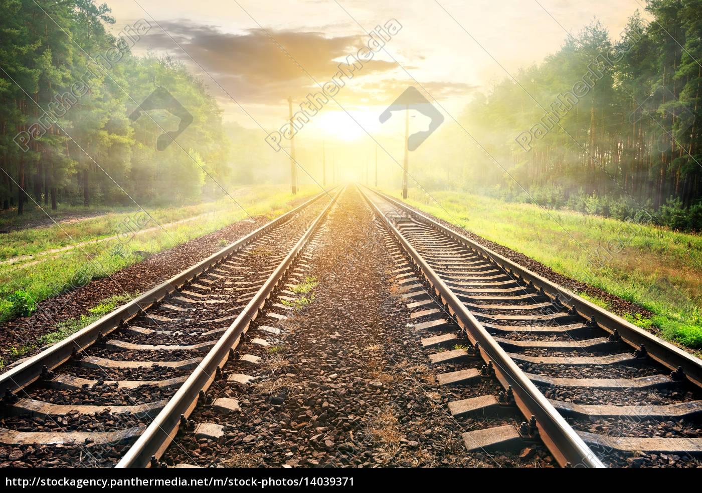 fog, over, railroad - 14039371