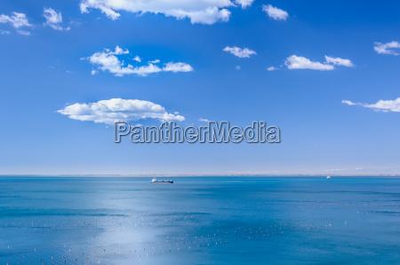 blue in blue marine scene