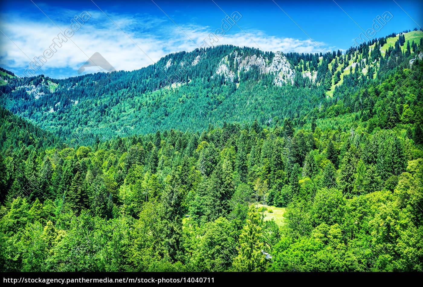 beautiful, mountain, landscape - 14040711