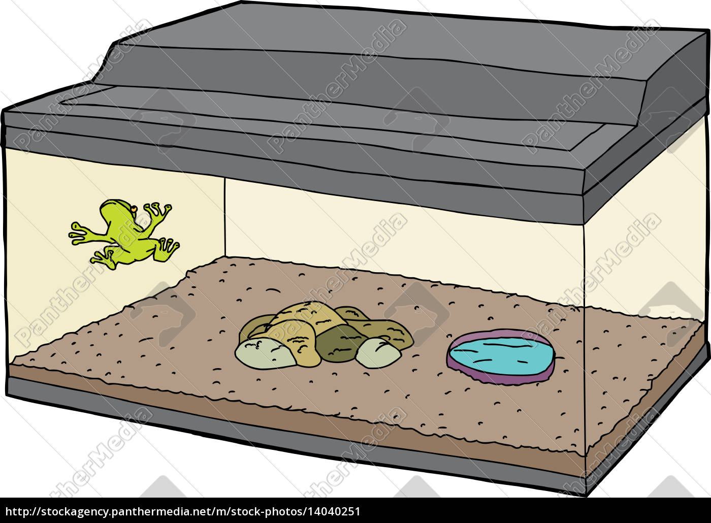 cartoon, of, frog, in, aquarium - 14040251