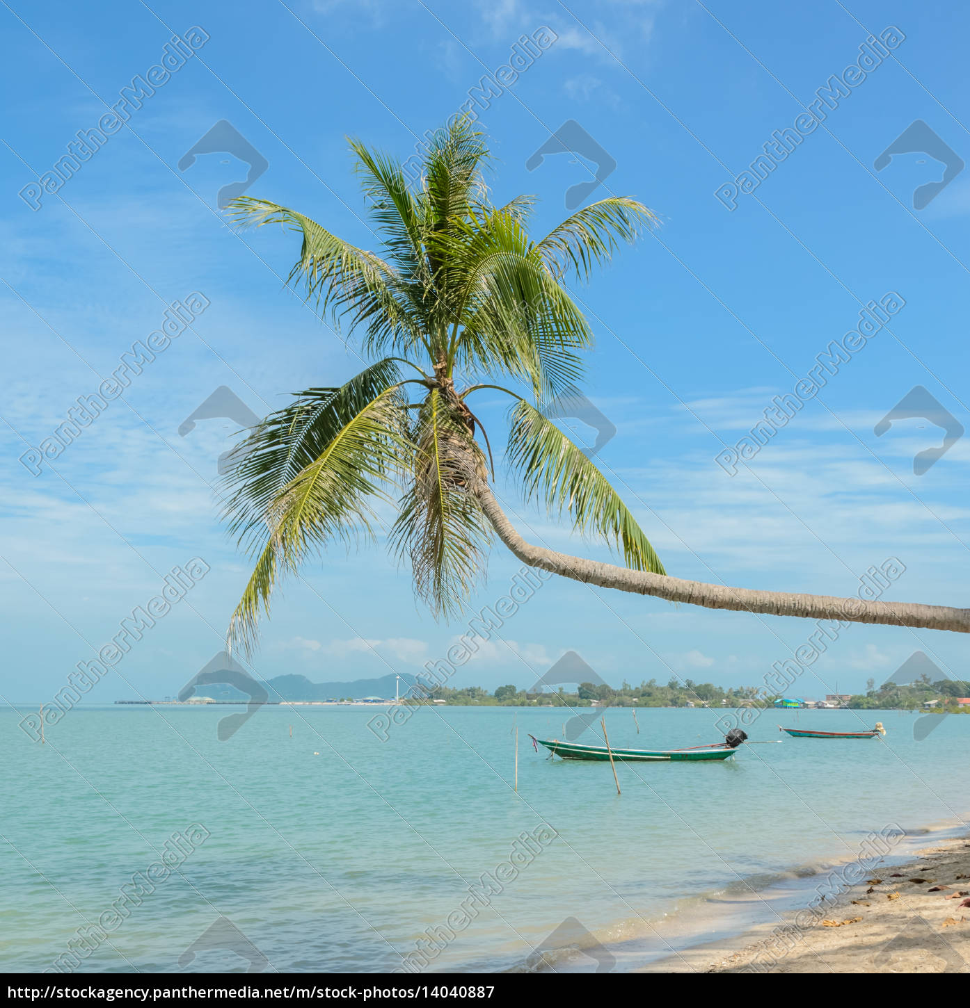 nature, background, of, sea, with, coconut - 14040887