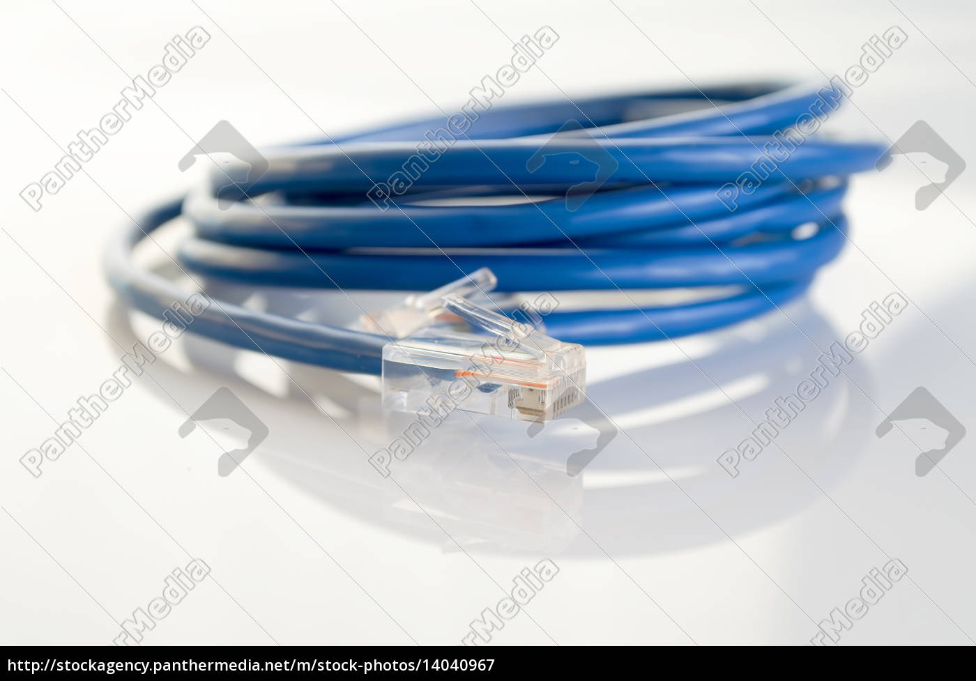 network, patchcord - 14040967