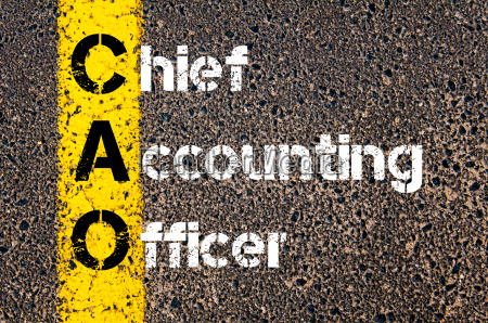 business, acronym, cao, –, chief, accounting - 14042649