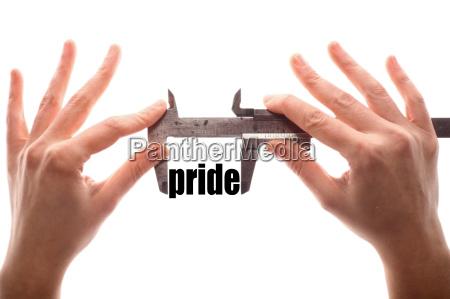 small, pride - 14042867