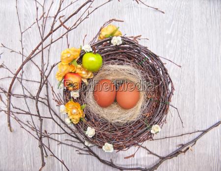 eggs, in, nest - 14044701