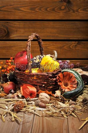 thanksgiving - 14048631